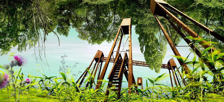 Ausgezeichnete Fotocollage durch Jurorinnen der Kunstakademie Düsseldorf: Bäume wachsen nicht in den Himmel. Das Kaarster Baudenkmal Brücken über den Nordkanal surrealistisch bearbeitet und verfremdet. Umgeben von surrealer fast karibischer Vegetation und Farbstimmung sowie unterschiedlichen Bäumen, die vom Himmel nach unten wachsen.